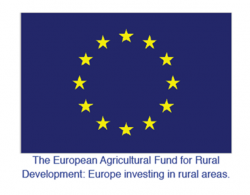 New funding to drive forward rural growth plans
